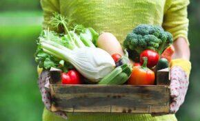 За тонус и презареждане - витамини през пролетта