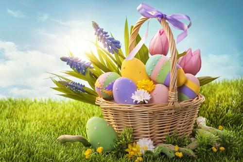 Градският ученически парламент организира днес Великденско търсене на яйца