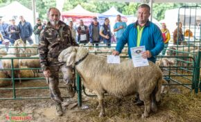 170-килограмовият коч Мани спечели състезанието за най- тежък коч на Събора на овцевъдите (СНИМКИ)