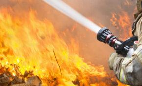 Четири деца са причинили пожара край Велинград, задържани са две жени