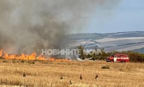 Подпалиха се 2 000 декара земеделска земя във Великотърновско